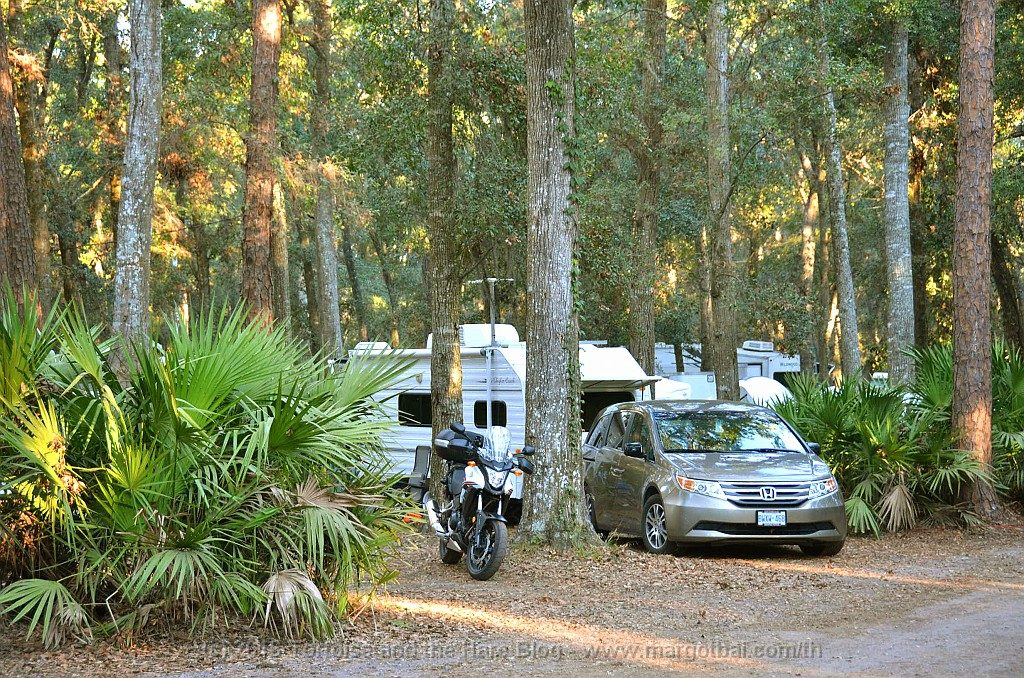 Our campsite at Jekyll Island Campground. Our first time camping with palm trees!